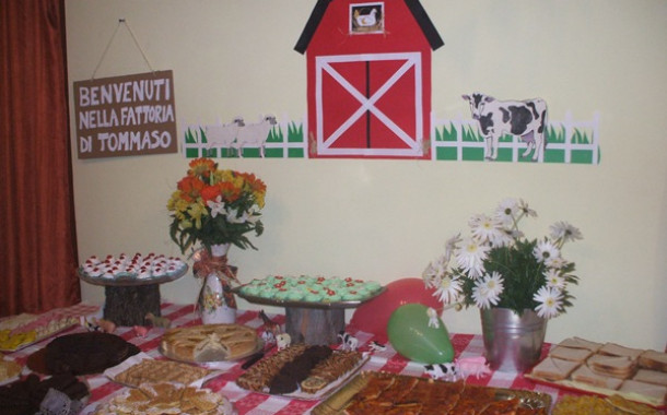 Organize a birthday party theme Farm (Barnyard Party)