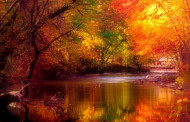 Pictures Fall